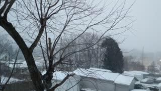 Missouri Snow
