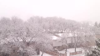 Snow snow snow...winter is here for sure