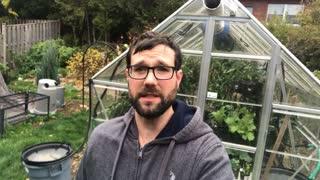 Garden Vlog 1 - Greenhouse Tour & Pepper Harvest