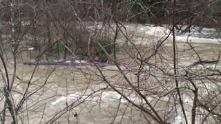 Flooded Creek!