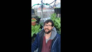 Garden Vlog 2 - Special Announcement