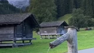 Dog water break in switzerland