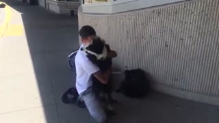 Dog owner reunited with best friend after 4 months apart_360p