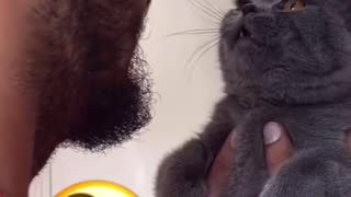 cat singing with owner