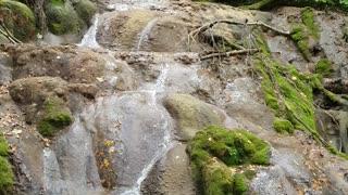 At the top of Beusnita waterfall