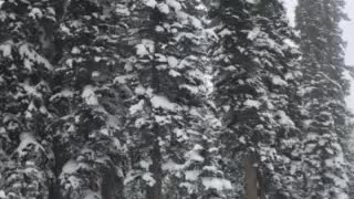 Skiing in a snow storm!