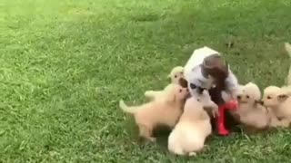 children with animals a good idea?