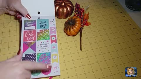 Happy Planner Happy Girl Trendsetter Big Sticker Pack Flip Through Review Sincerely Sapphire dot com