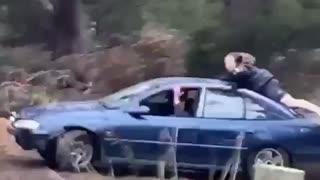 Backflip Attempt From Moving Car Falls Flat