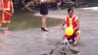 Funny clip .Trying to control alligator 🐊