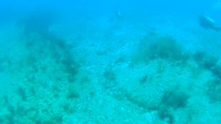 Cancun Mexico Carribean Scuba Diving Part 8
