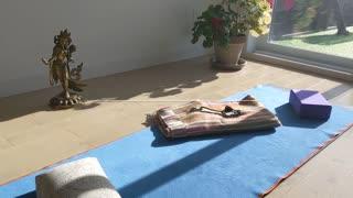 Hatha with Harry - Beginner's yoga 6.1: Sun Salutation preparation