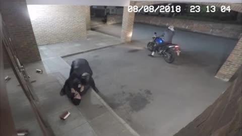 Criminal Gets K.O.'ed By Instant Karma