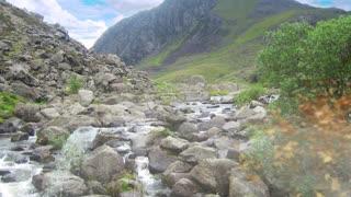 Peaceful Mountain Stream