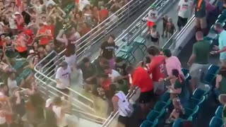 Falling cat saved with American flag at Miami football game