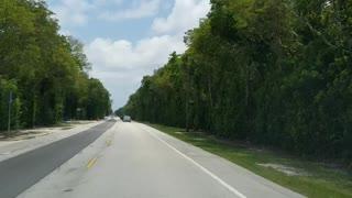 FLORIDA DAY