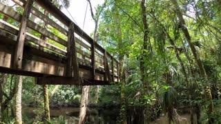 Visiting Hillsborough River State Park