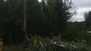 Firefighters working with chainsaw