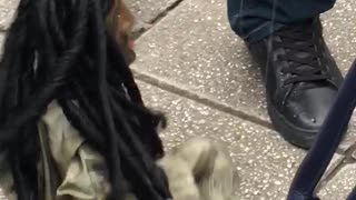 Tht how puppet BoB Marley shows his sexy moves out on the street :)