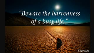 Soul of the Everyman - Busy and BARREN