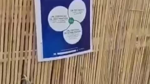 Covid Passport Poster Printed Jan. 2020? [France]