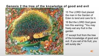 Genesis 2: Bible Study Online