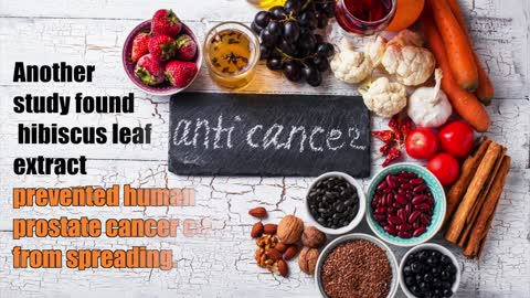 THE TRUTH ABOUT CANCER PRESENTS: HEALTH NUGGETS - 7+ Reasons to Drink Hibiscus Tea
