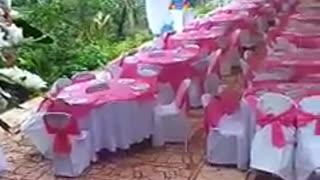 Tauhai wedding reception