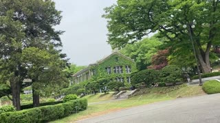 Scene of Yonsei University in the spring, Korea