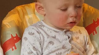 Baby boy literally can't stay awake during dinner