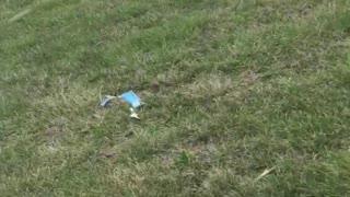 Police Chase Stolen Vehicle Through Grassy Field