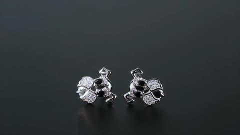 Stunning Schnauzer Face Silver Earrings