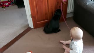 Baby and Kitty Love Playing Together