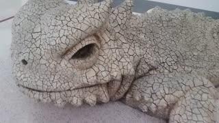Monster Vegas Lizard
