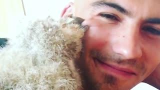 Baby owl gives caretaker loving kisses