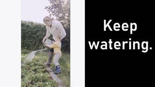 Encouragement for New Preppers, Gardeners and Content Creators