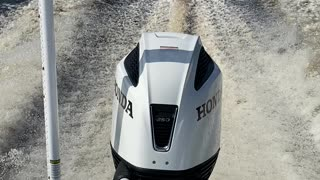 Honda Outboards are the Champ!