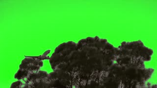 Green Screen Airline Take-off for Youtube Video Creators