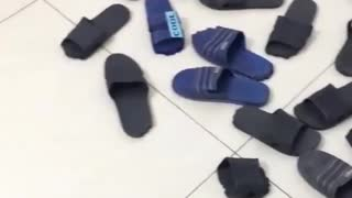 What happened to slippers