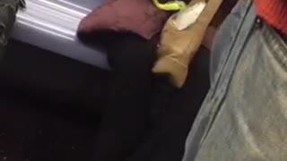 Woman purple puffy jacket peeling fruit on subway train with knife