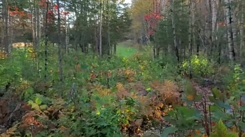 ATV Maine Fall Ride