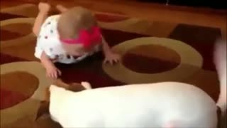 Pranks and dog games with kids