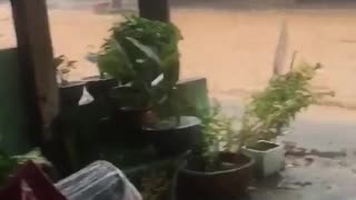 Man Rescued From Raging Torrent on Flooded Street