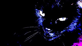 """""""The Eyes of the Panther"""" (Narrated By Jeffrey LeBlanc)"""
