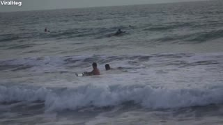 Surfers Collide in Costa Rica