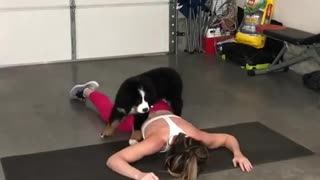 """Puppy """"helps out"""" owner with her workout"""