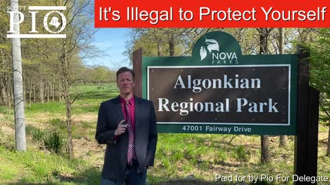 The Second Amendment in Virginia