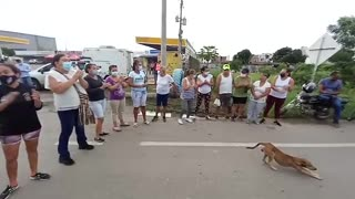 Protesta de habitantes en la zona de conubarción