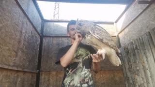 The biggest owl
