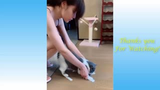 Cats and Owners are the best funny Videos